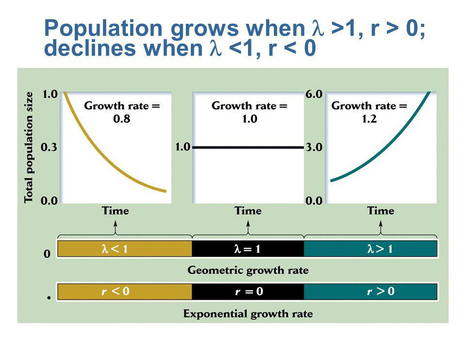 Population grows when l >1, r > 0; declines when l <1, r < 0