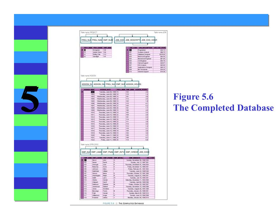Figure 5.6 The Completed Database