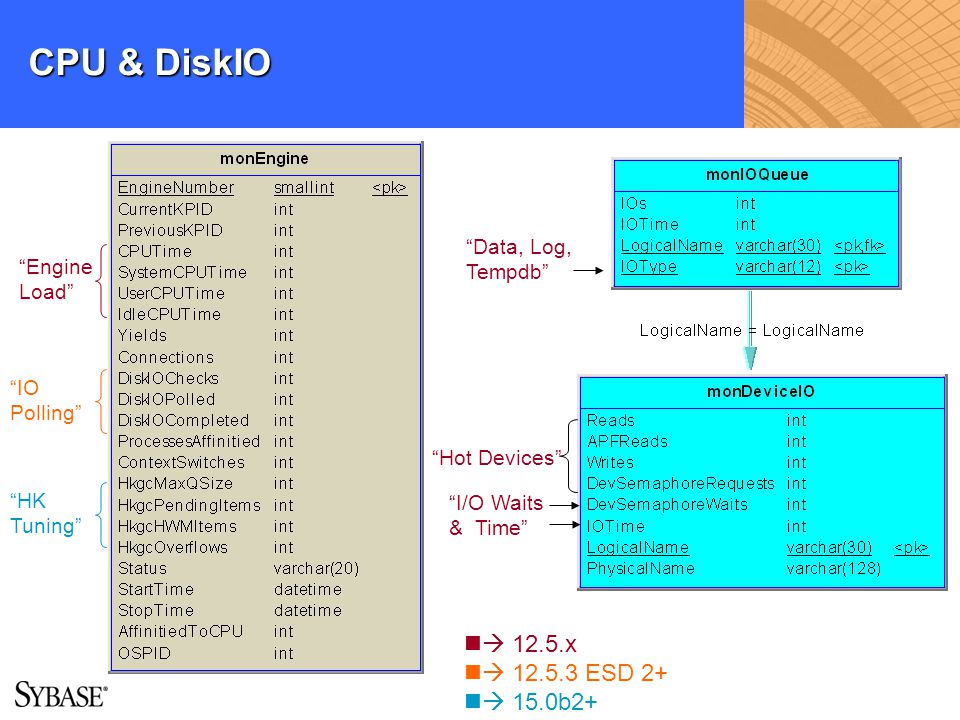 CPU & DiskIO  12.5.x  12.5.3 ESD 2+  15.0b2+ Data, Log, Tempdb