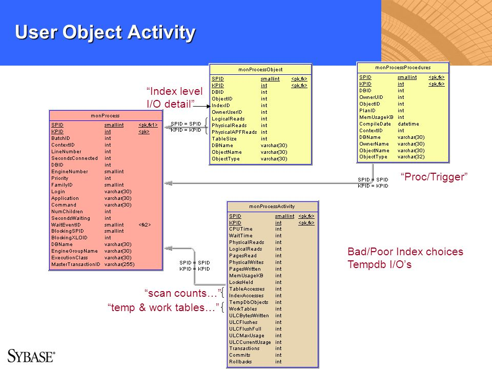 User Object Activity Index level I/O detail Proc/Trigger