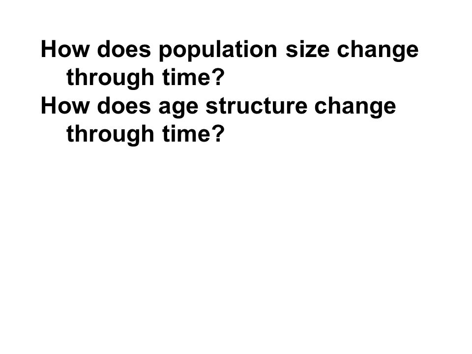 How does population size change through time