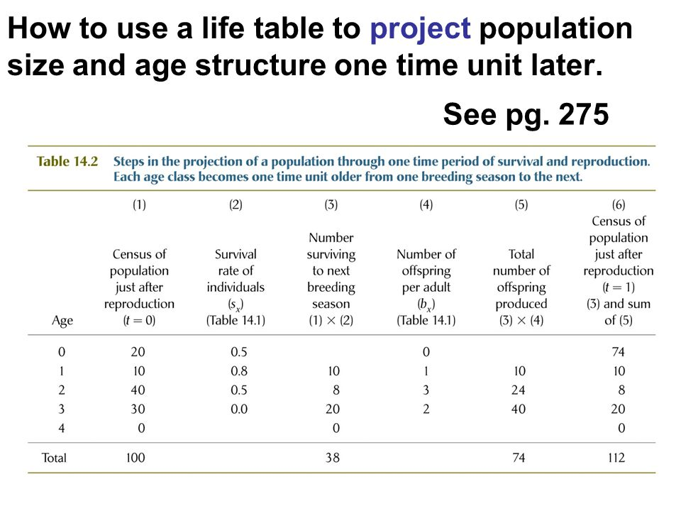 How to use a life table to project population size and age structure one time unit later.