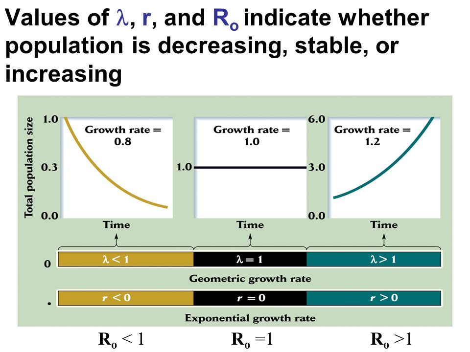 Values of , r, and Ro indicate whether population is decreasing, stable, or increasing