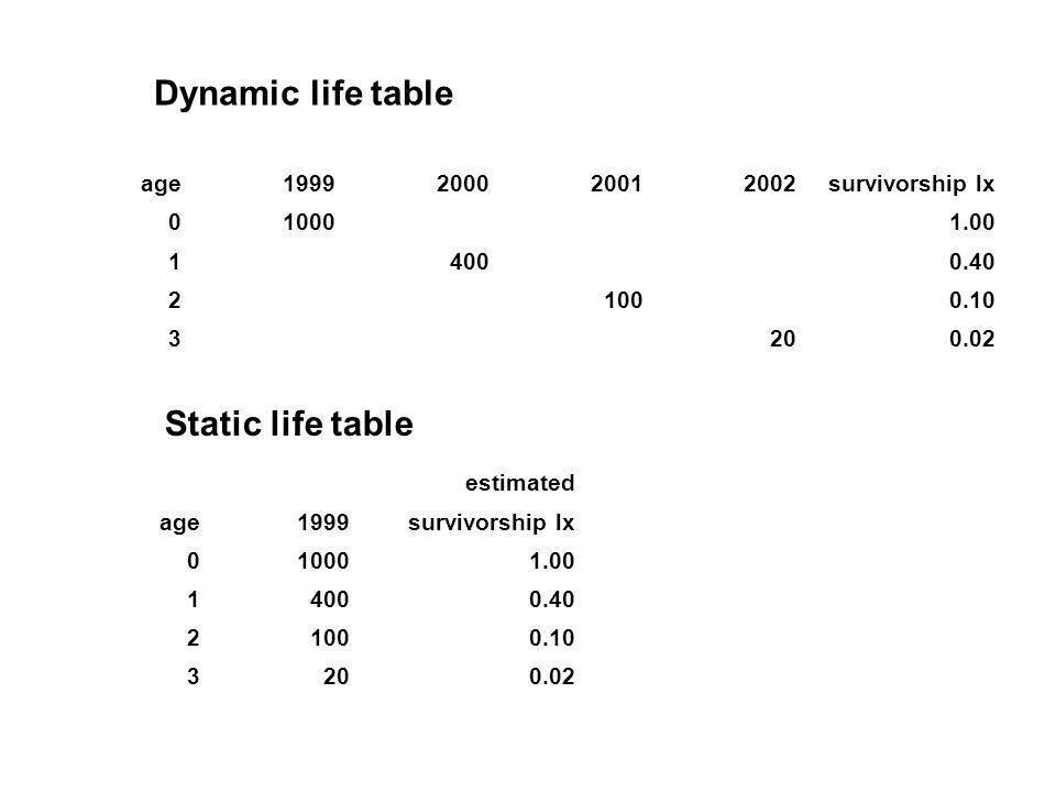 Dynamic life table Static life table age