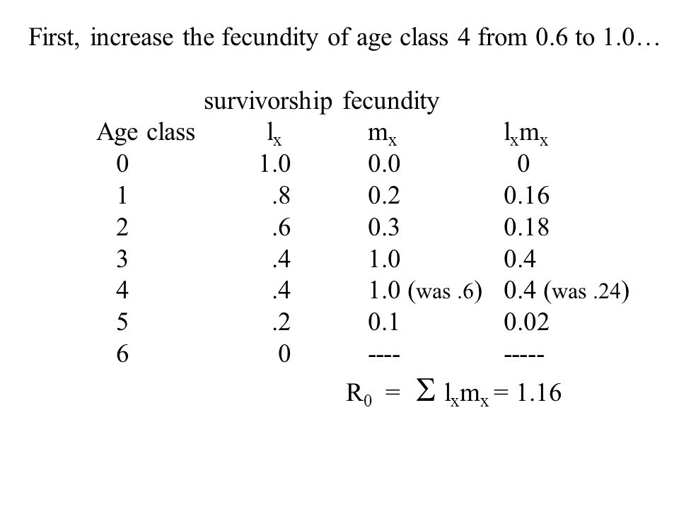 First, increase the fecundity of age class 4 from 0.6 to 1.0…