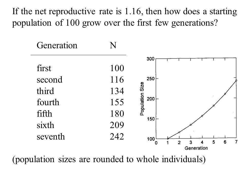 If the net reproductive rate is 1.16, then how does a starting
