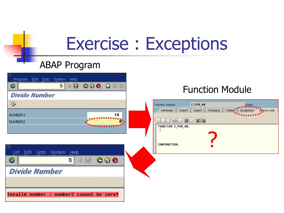 Exercise : Exceptions ABAP Program Function Module