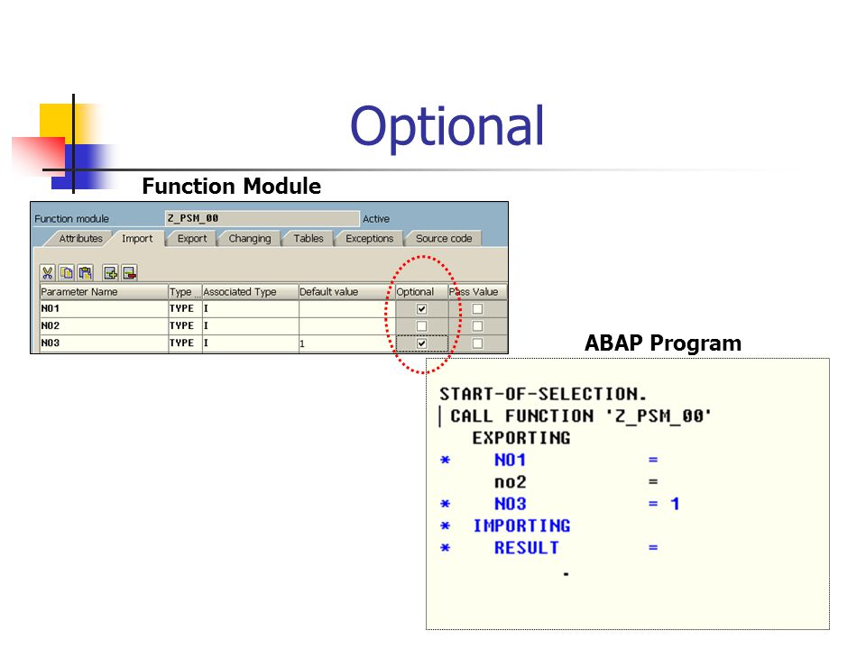 Optional Function Module ABAP Program
