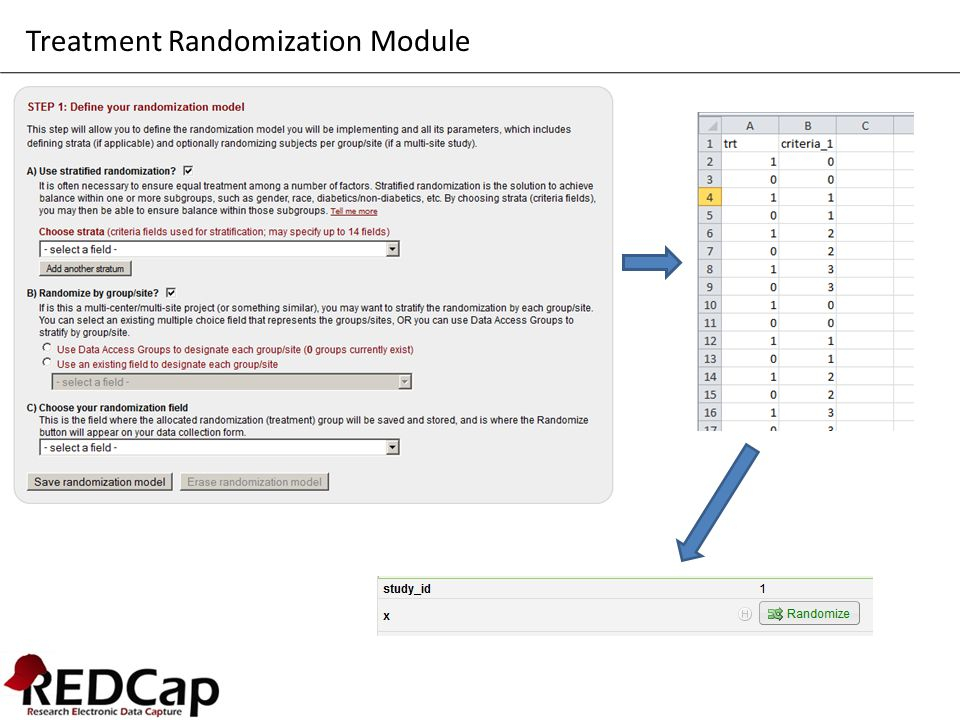 Treatment Randomization Module
