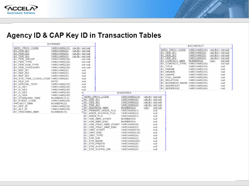 Agency ID & CAP Key ID in Transaction Tables
