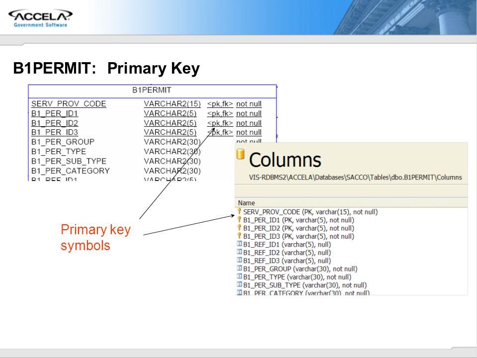 B1PERMIT: Primary Key Primary key symbols