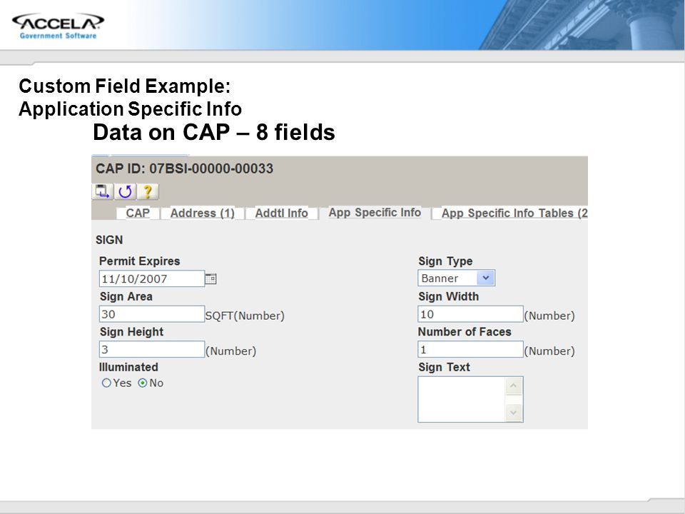 Custom Field Example: Application Specific Info