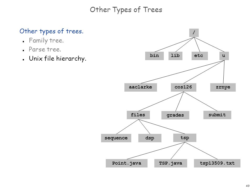 Other Types of Trees Other types of trees. Family tree. Parse tree.