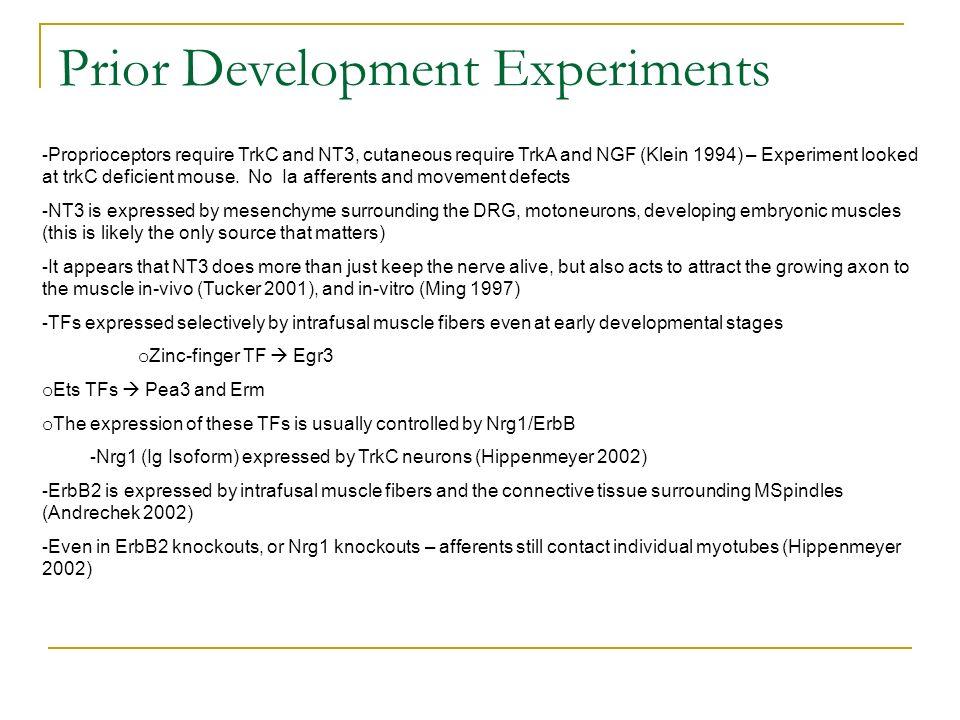 Prior Development Experiments