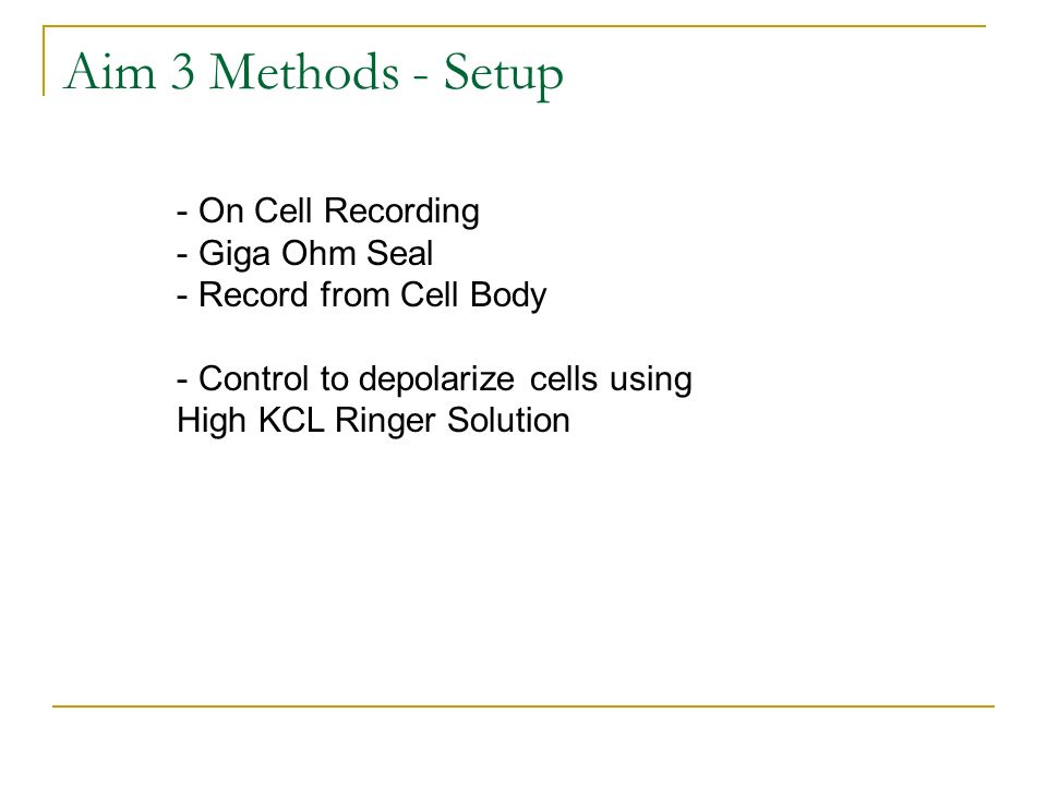 Aim 3 Methods - Setup On Cell Recording Giga Ohm Seal