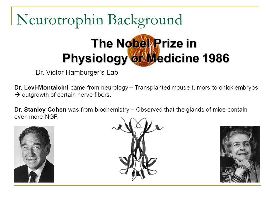 Neurotrophin Background