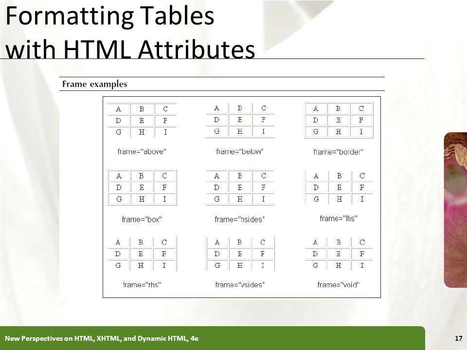 Formatting Tables with HTML Attributes