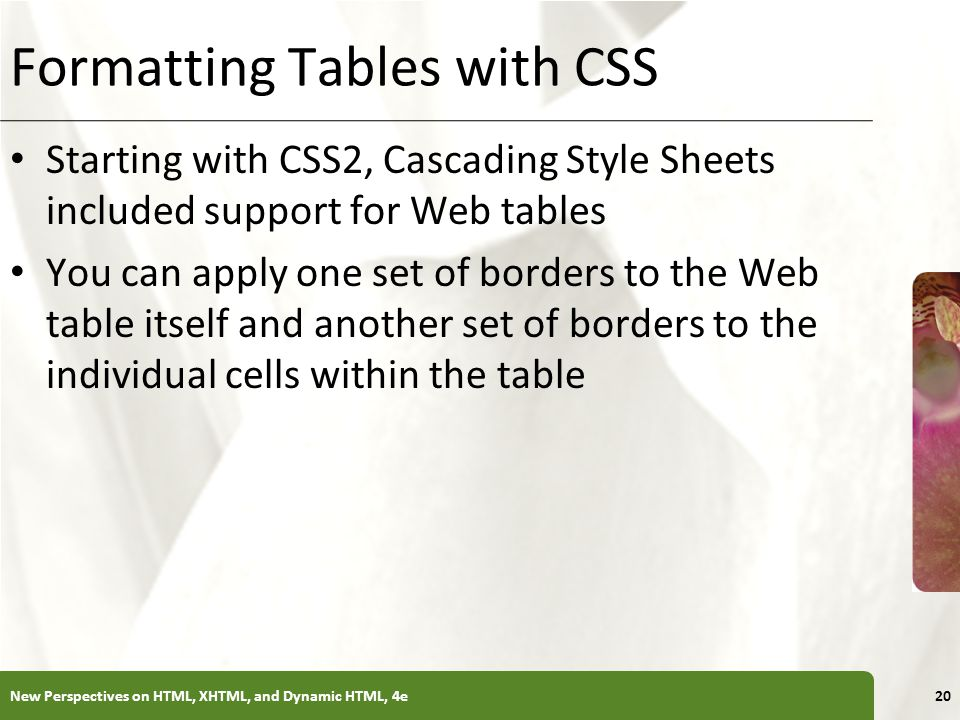 Formatting Tables with CSS