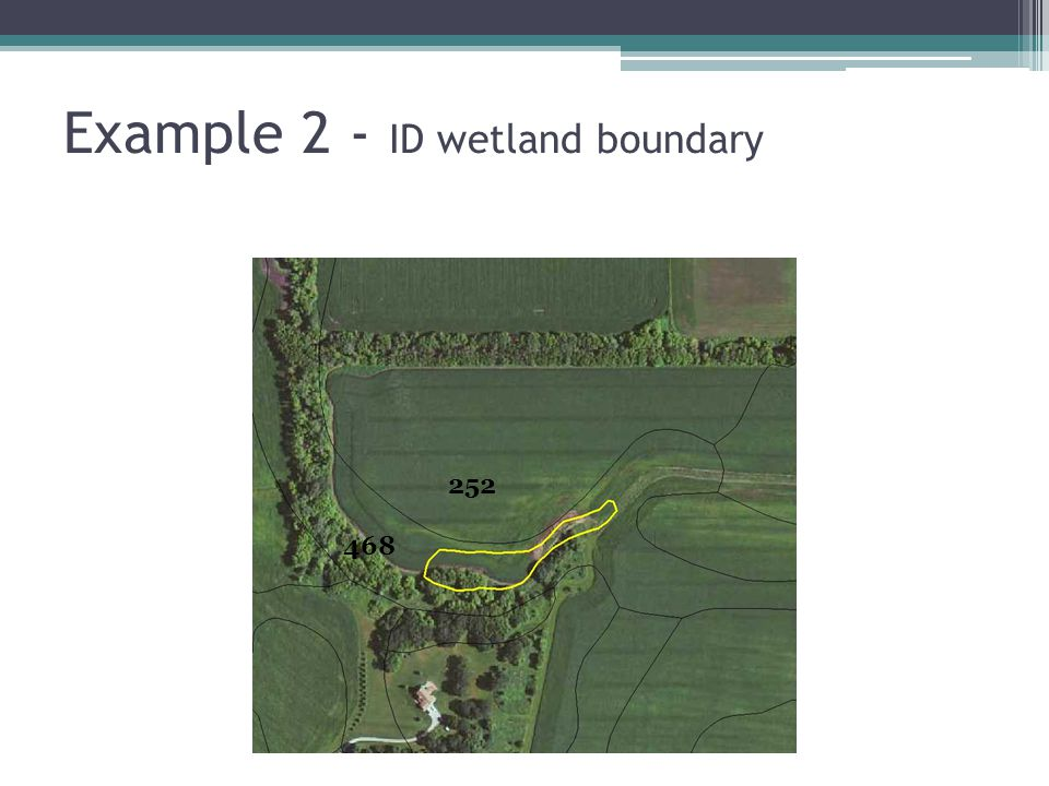Example 2 - ID wetland boundary