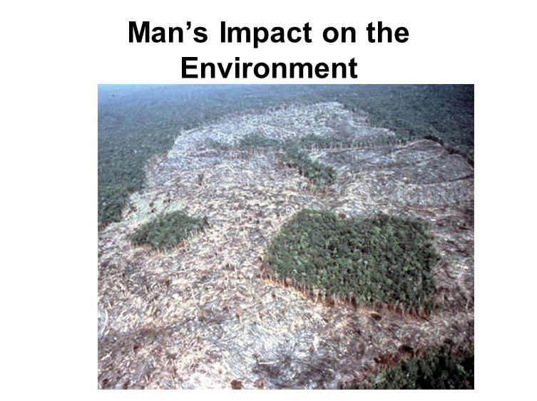 Man's Impact on the Environment