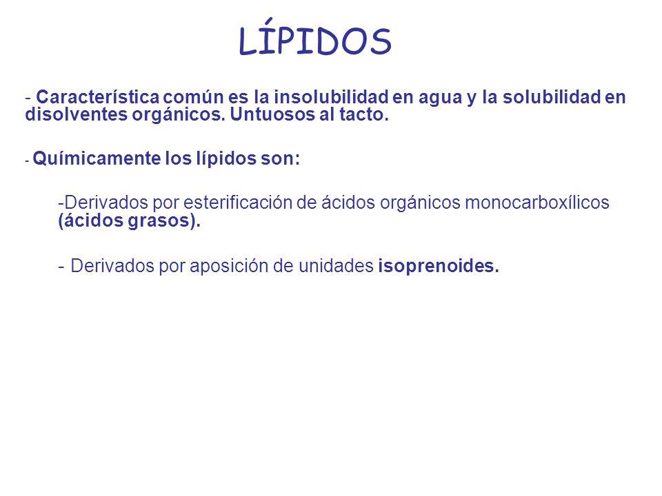 LÍPIDOS Derivados por aposición de unidades isoprenoides.