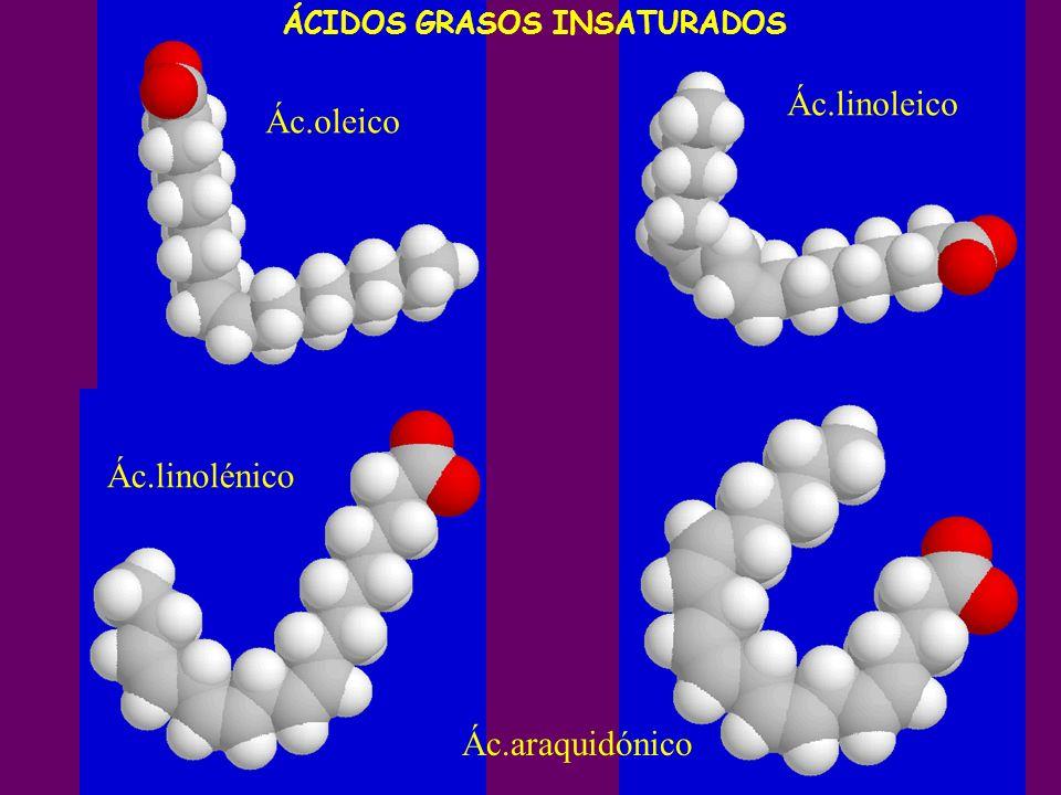Ác.linoleico Ác.oleico Ác.linolénico Ác.araquidónico
