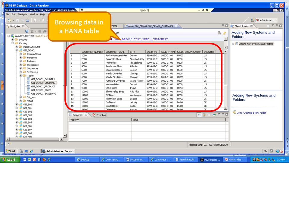 Browsing data in a HANA table