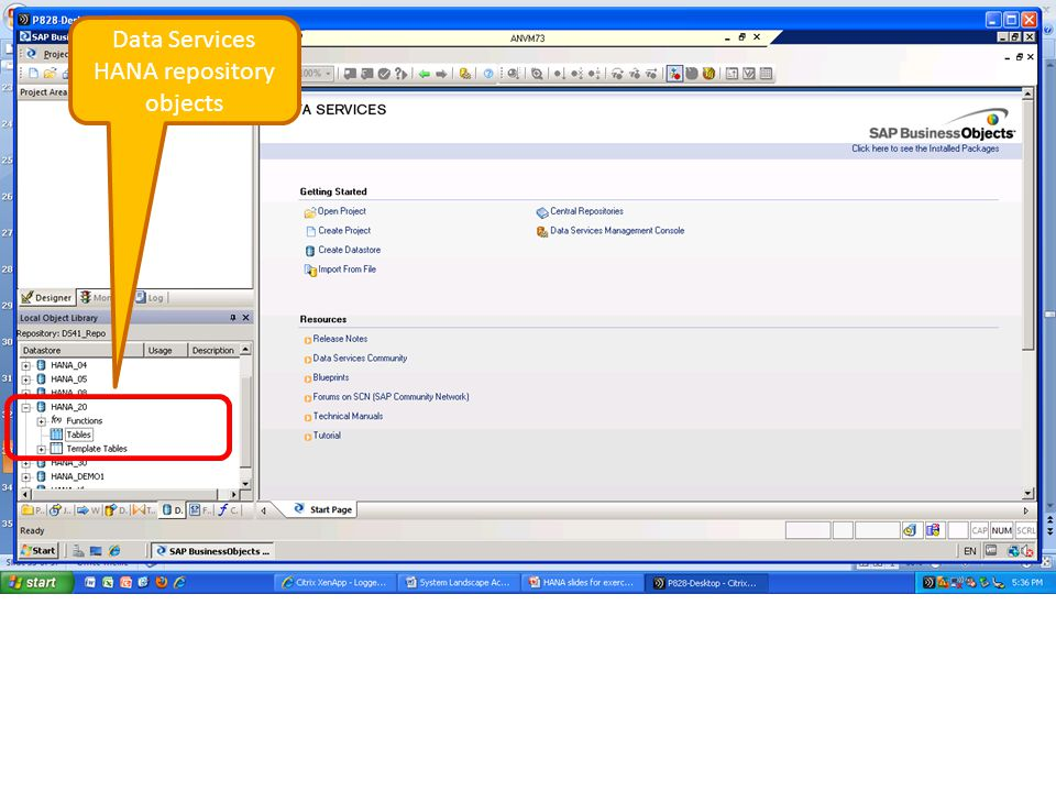 Data Services HANA repository objects