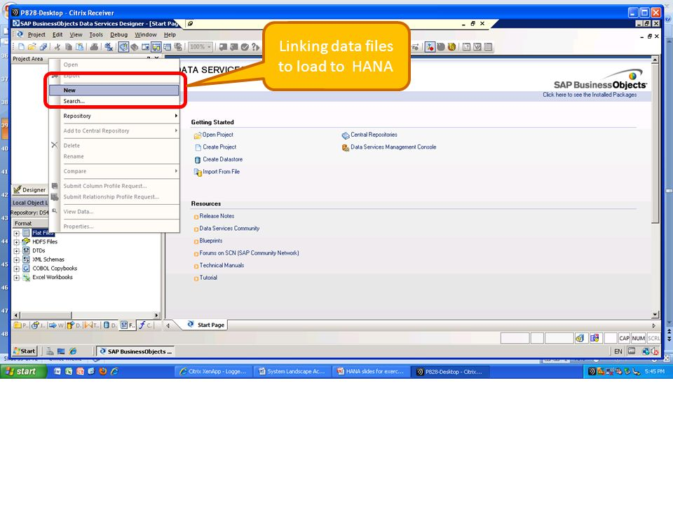Linking data files to load to HANA