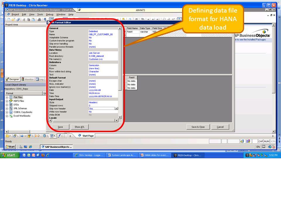 Defining data file format for HANA data load