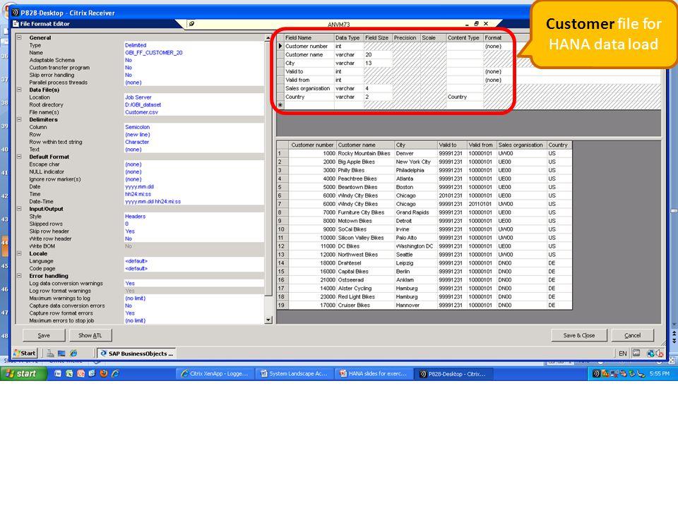 Customer file for HANA data load