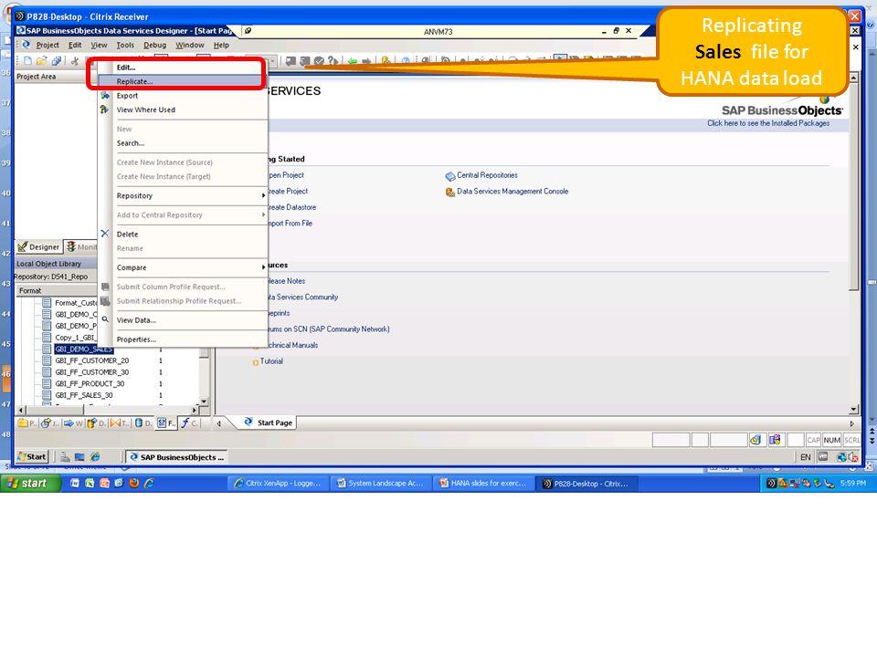 Sales file for HANA data load