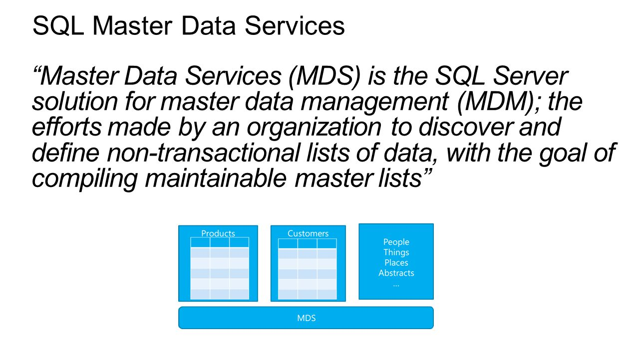 master data management services