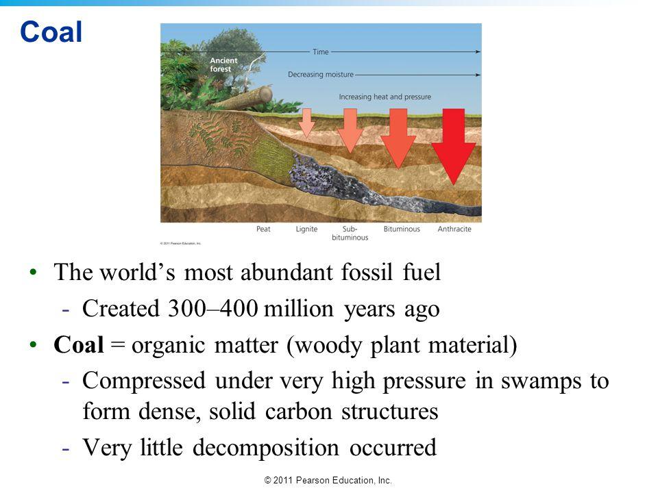 Coal The world's most abundant fossil fuel