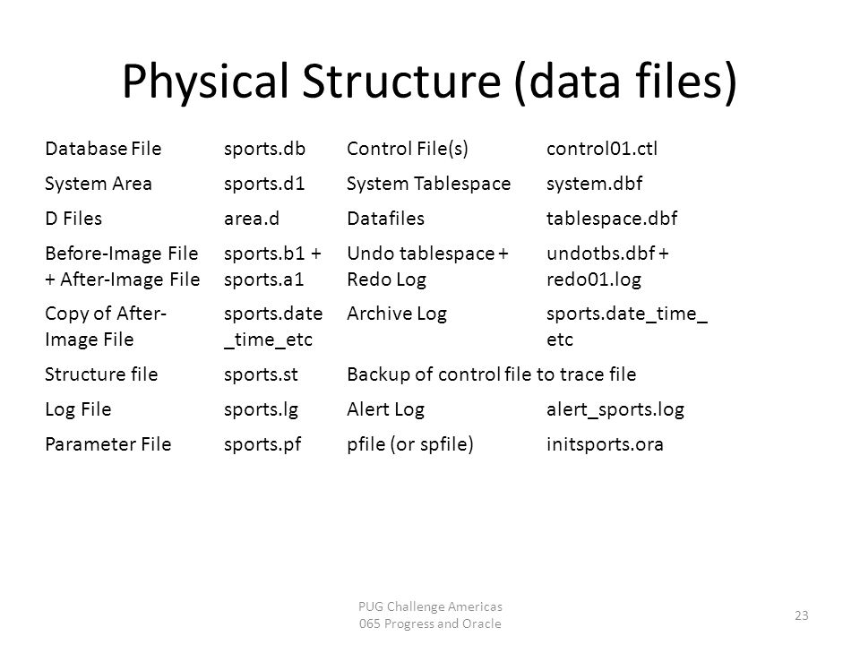 Physical Structure (data files)
