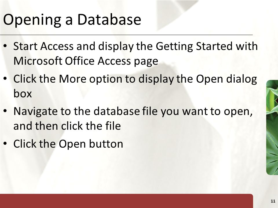 Opening a Database Start Access and display the Getting Started with Microsoft Office Access page.