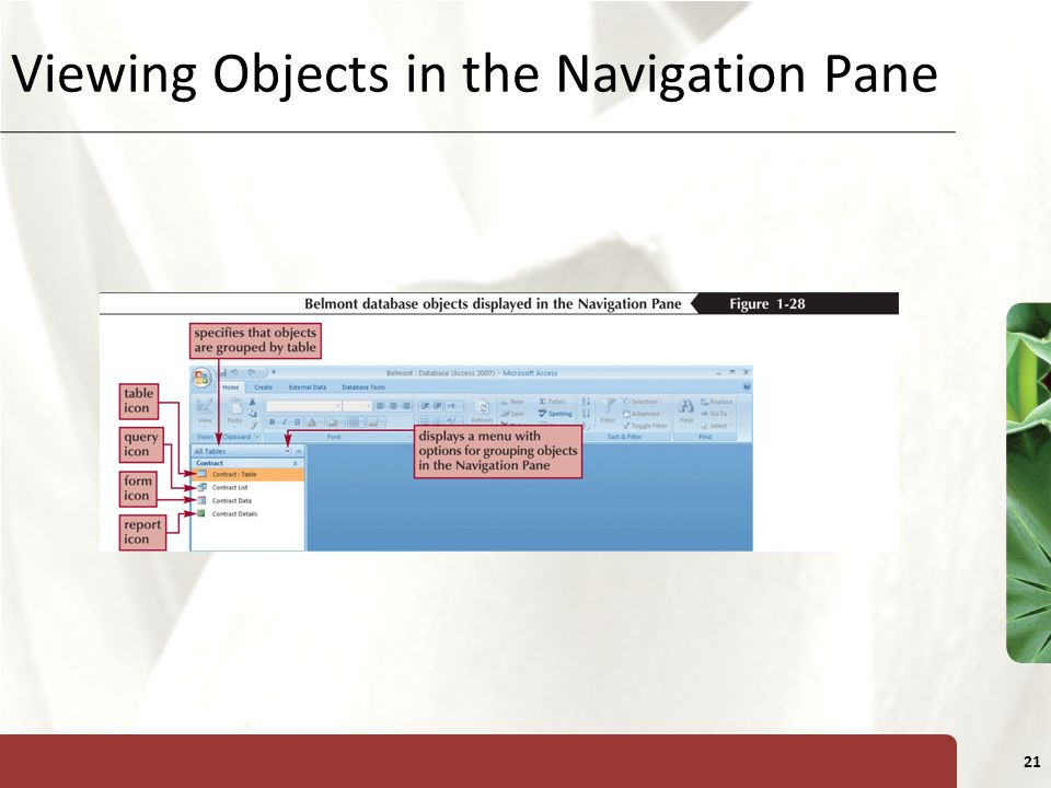 Viewing Objects in the Navigation Pane