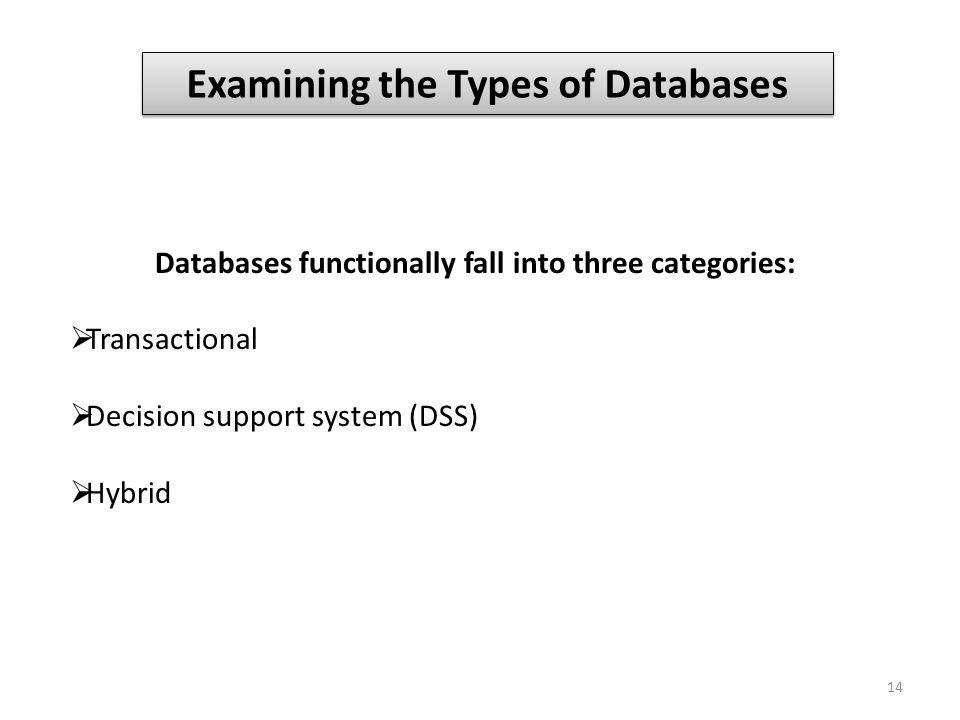 Examining the Types of Databases