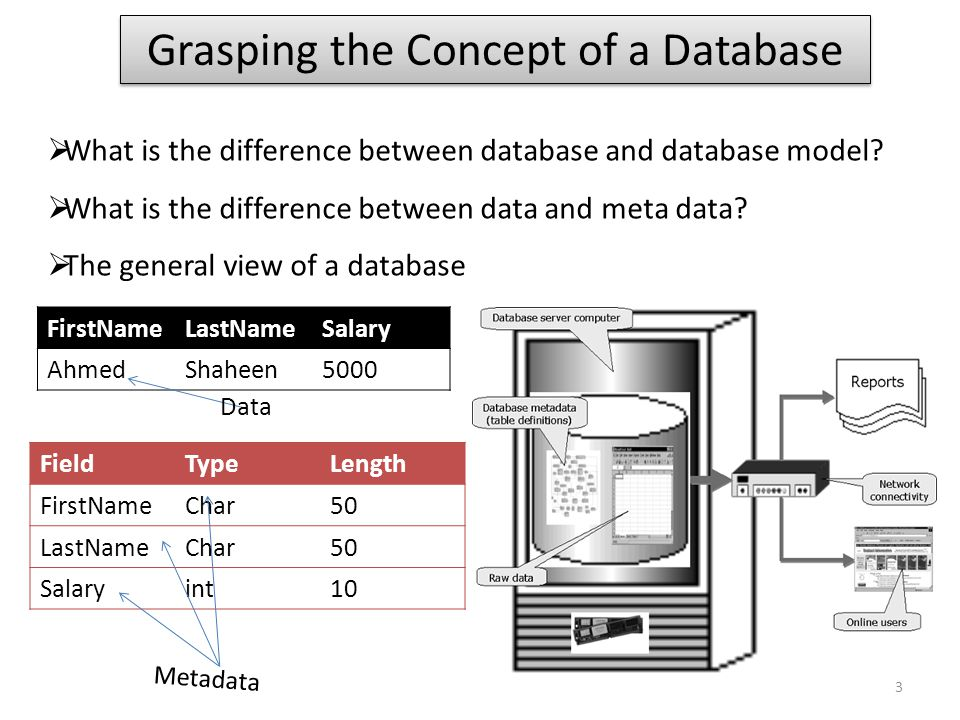 Grasping the Concept of a Database