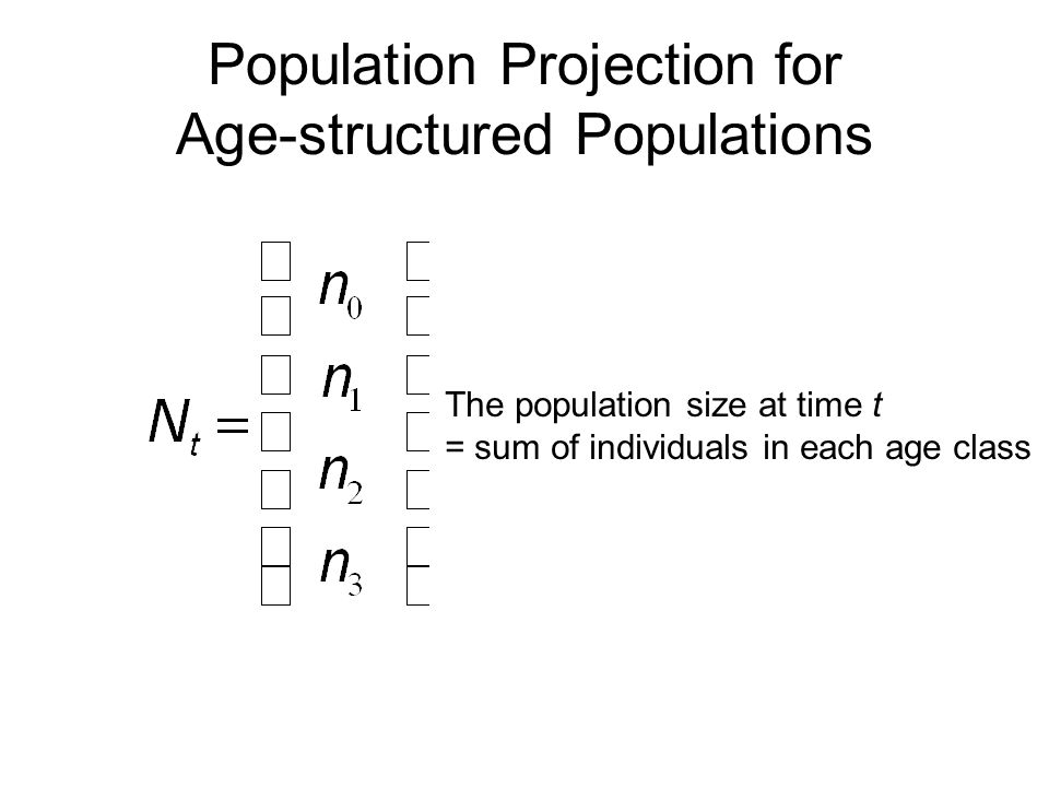 Population Projection for Age-structured Populations