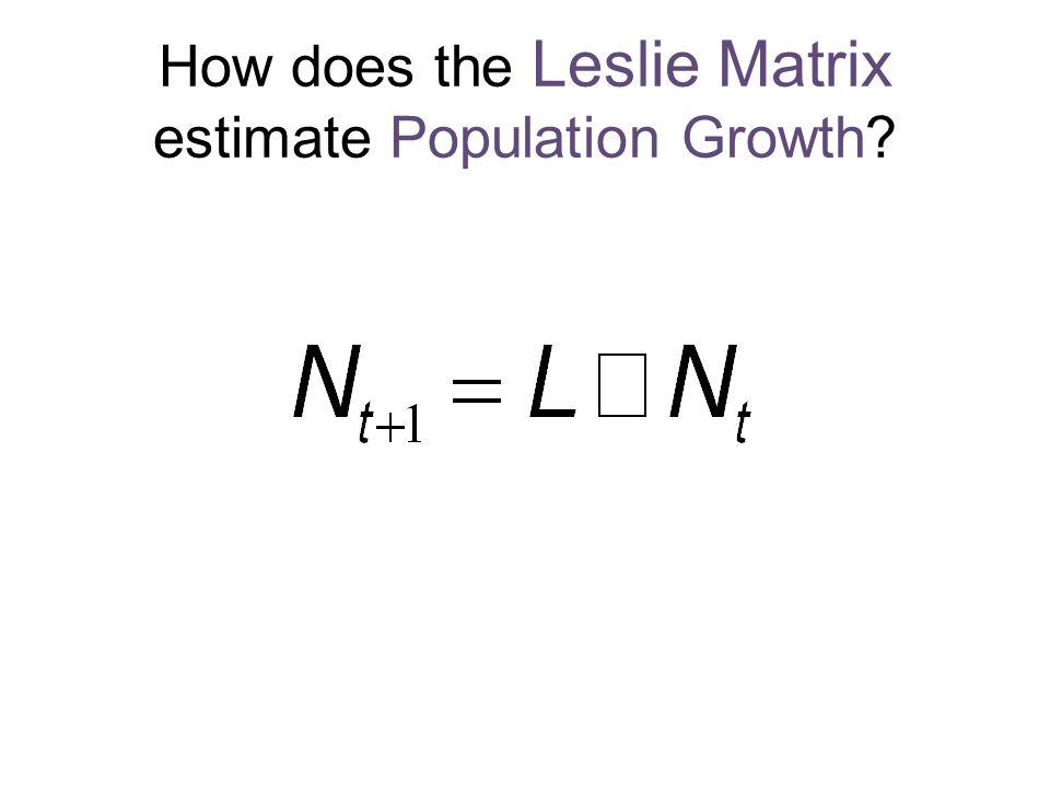 How does the Leslie Matrix estimate Population Growth