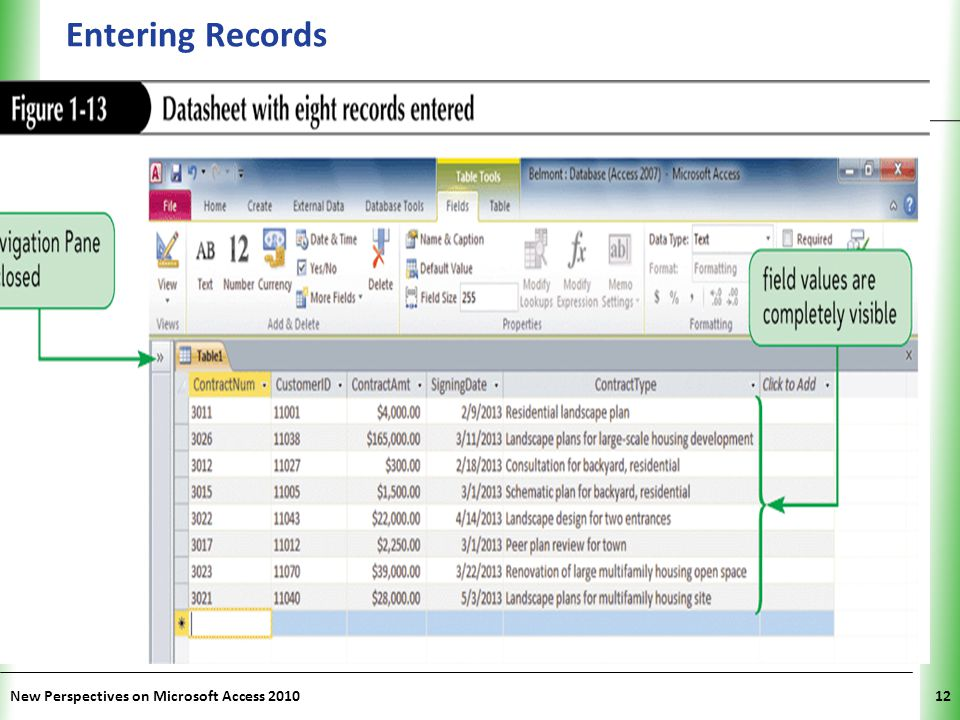 Entering Records New Perspectives on Microsoft Access 2010