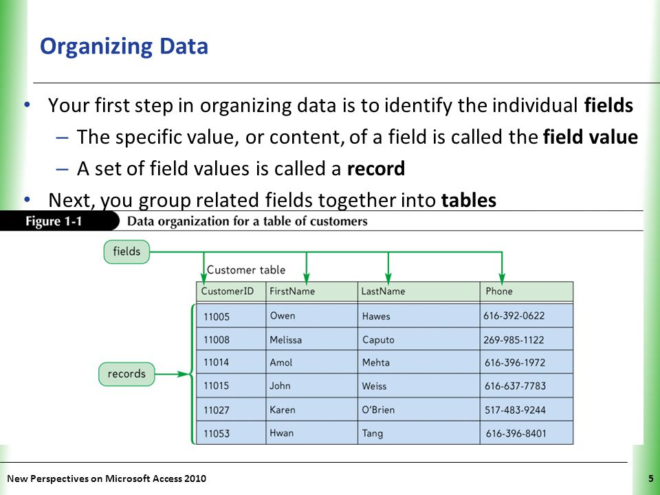 Organizing Data Your first step in organizing data is to identify the individual fields.