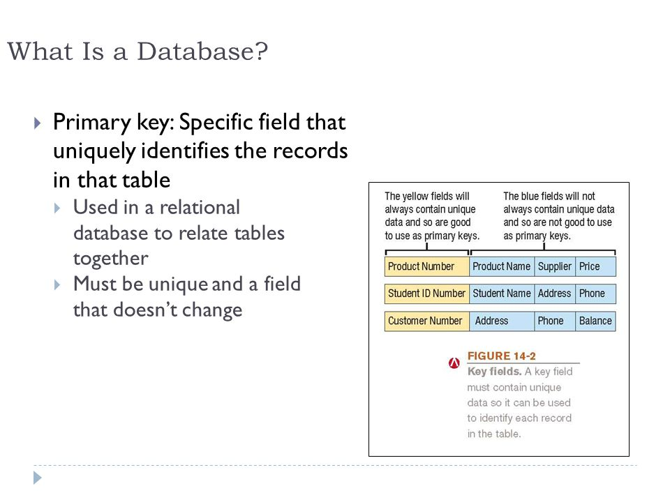 What Is a Database Primary key: Specific field that uniquely identifies the records in that table.