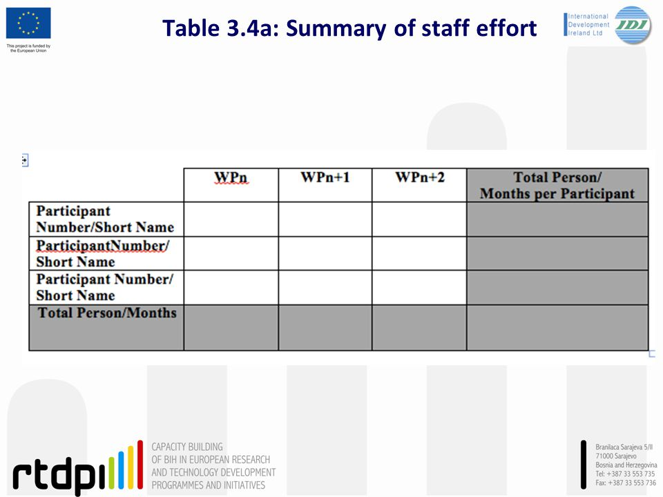 Table 3.4a: Summary of staff effort