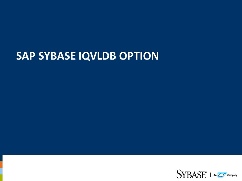 SAP SYBASE IQVLDB Option