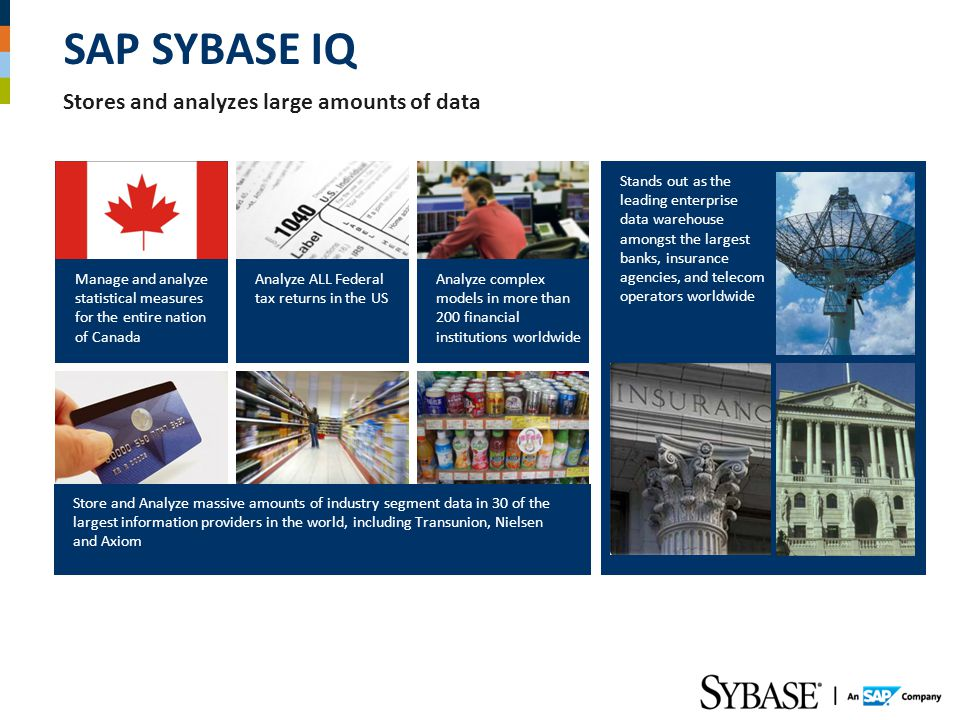 SAP SYBASE IQ Stores and analyzes large amounts of data