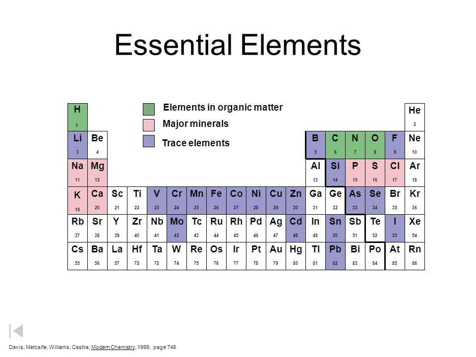 Essential Elements Elements in organic matter H He Major minerals Li