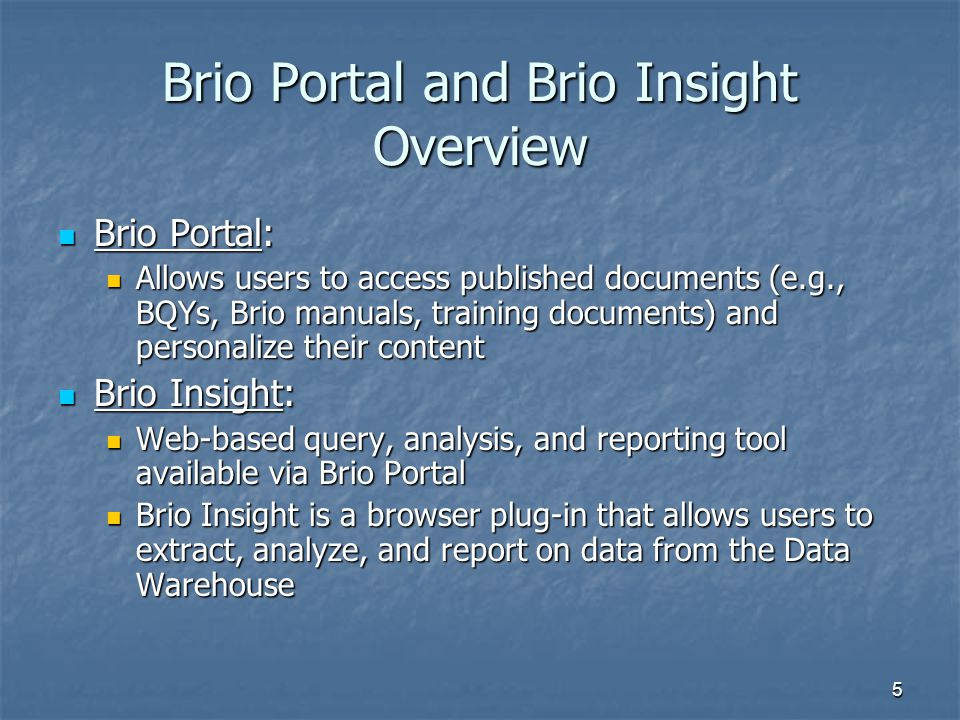 Brio Portal and Brio Insight Overview