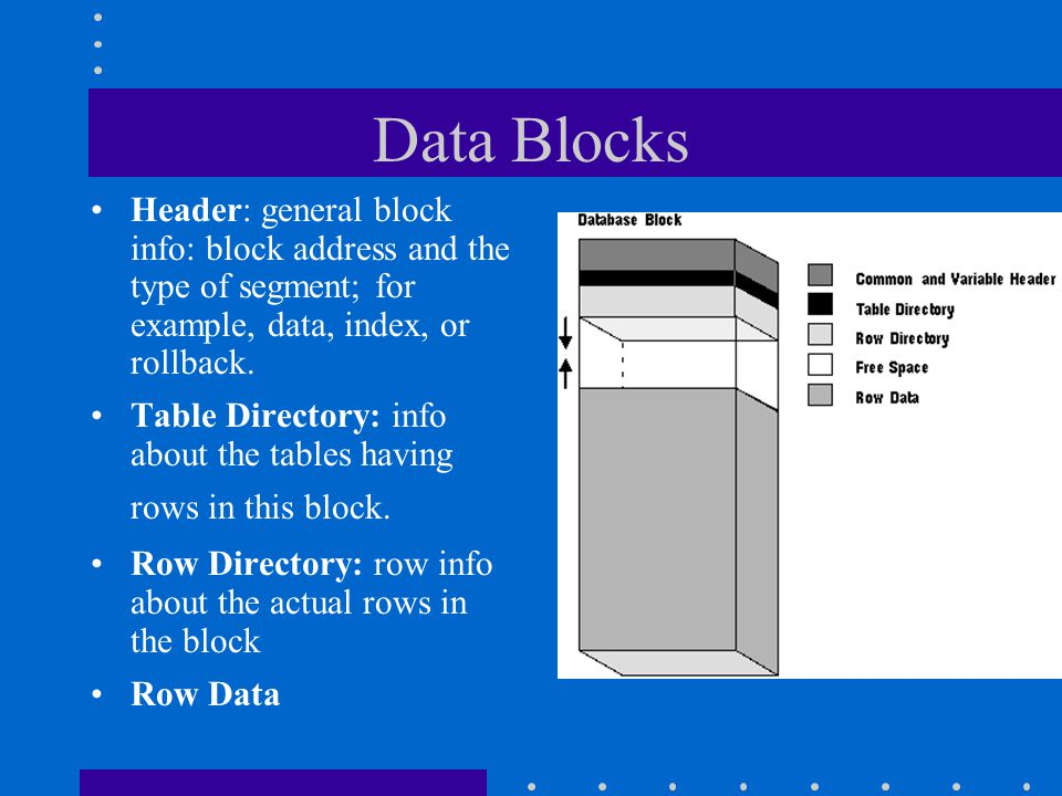 Data Blocks Header: general block info: block address and the type of segment; for example, data, index, or rollback.
